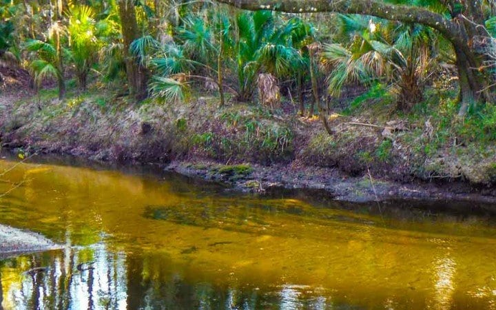 Alderman's Ford Regional Park Hiking Review