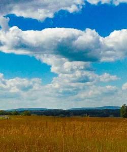 Manassas National Battlefield Park Hiking Review