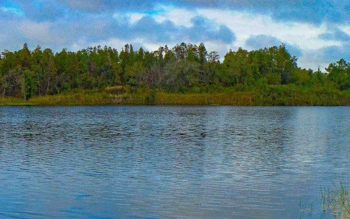 maynard mine - green swamp florida