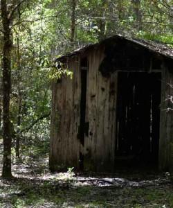 The Stewart Homestead Murders