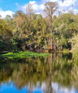 Dead River Park Hiking Review