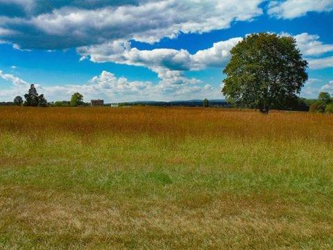 Manassas National Battlefield Park – Bull Run Hiking Review