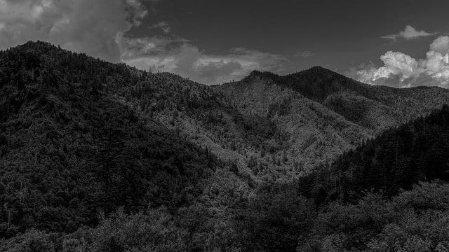 Great Smoky Mountains - Black and White