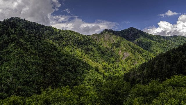 Great Smoky Mountains National Park Photographs