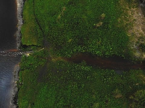 4K Aerial Footage Of The St Johns River In Florida