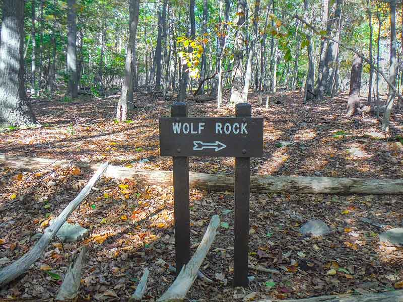 Catoctin Mountain Park – Wolf Rock Hiking Review