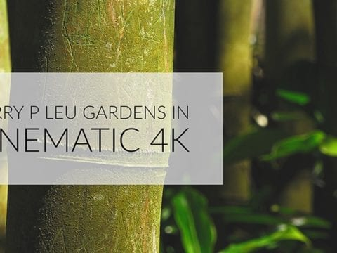 Harry P Leu Gardens in Cinematic 4K – Orlando, FL