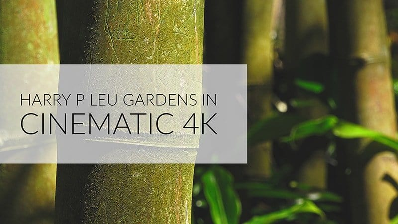 Harry P Leu Gardens in Cinematic 4K – Orlando, FL