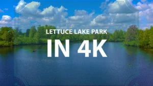 Lettuce Lake Park Nature Video In 4k