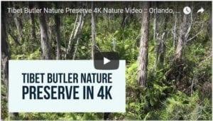 Tibet Butler Nature Preserve Nature Video - 4K