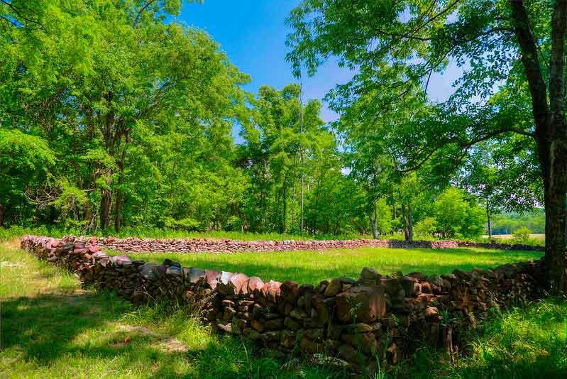 Pittsylvania – Carter Family Cemetery
