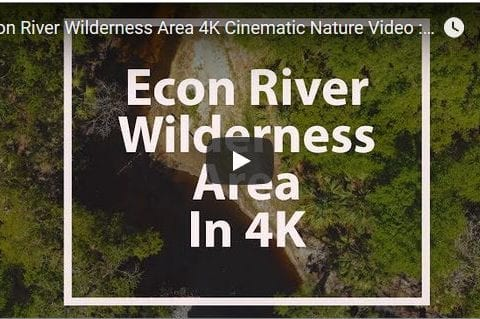 Econ River Wilderness Area Cinematic Nature Video Filmed in 4K