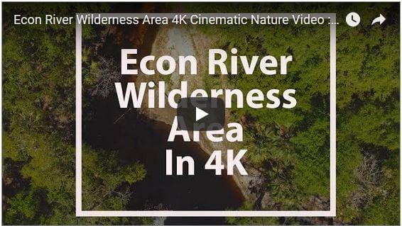 Econ River Wilderness Area Cinematic Nature Video Filmed in 4K
