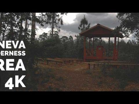 Geneva Wilderness Area Cinematic 4K Nature Vidleo