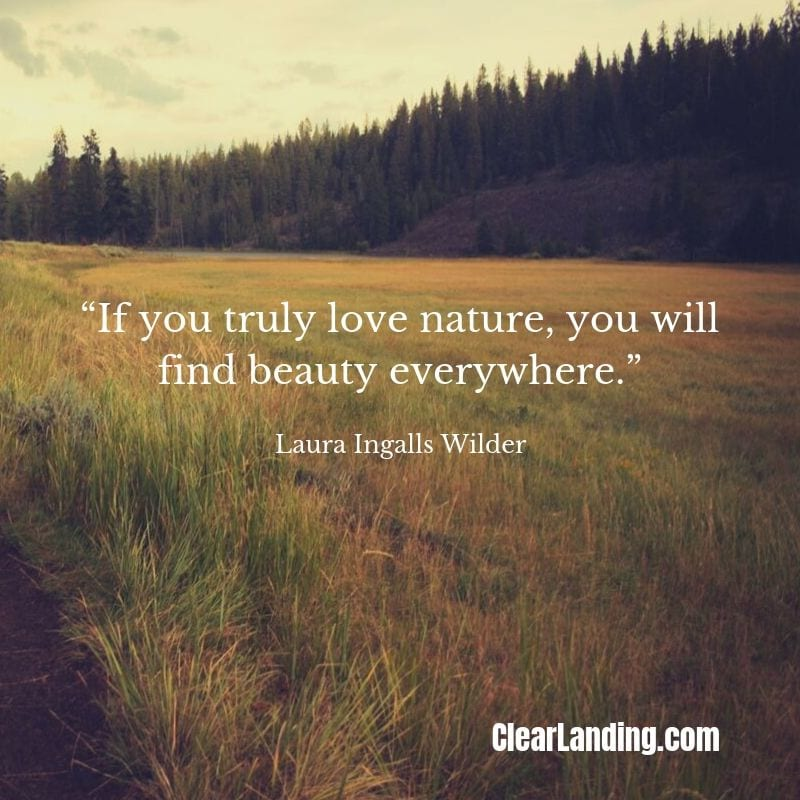 if you truly love nature, you will find beauty everywhere nature meme by clear landing