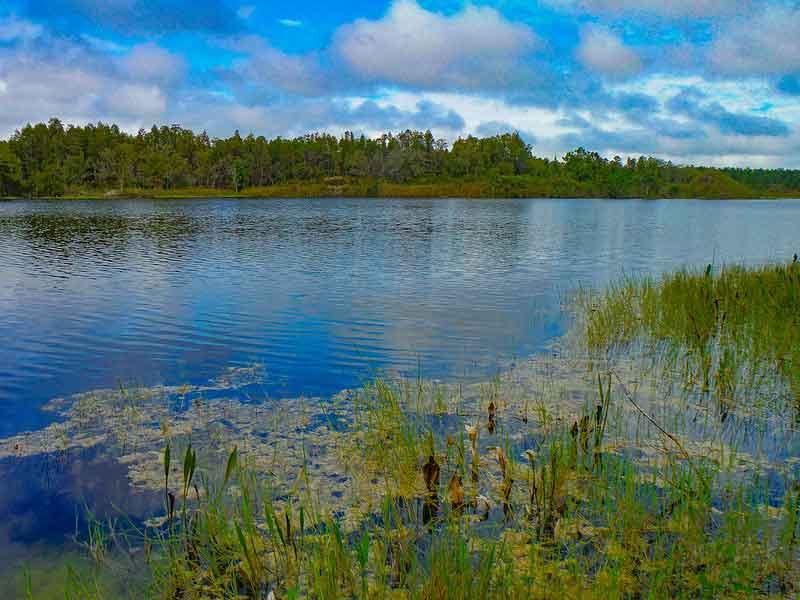 Maynard Mine – Green Swamp Florida