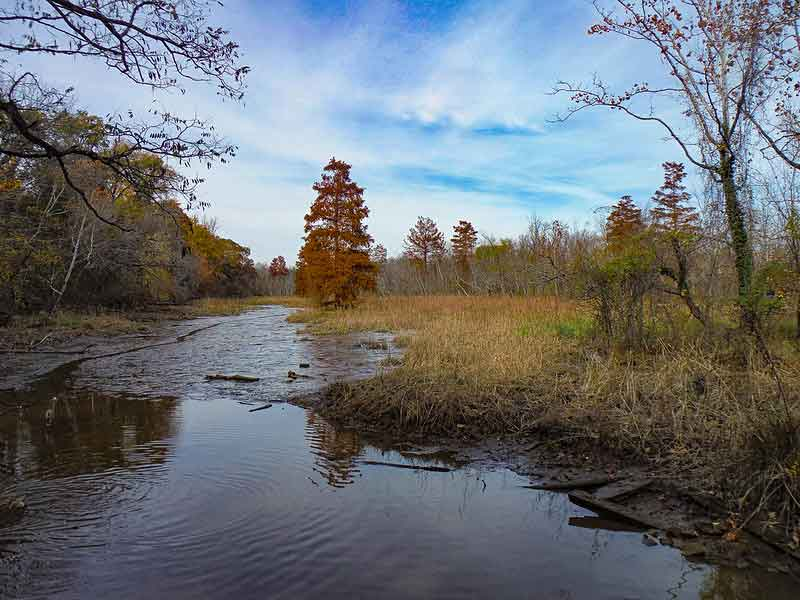 Theodore Roosevelt Island Hiking Review