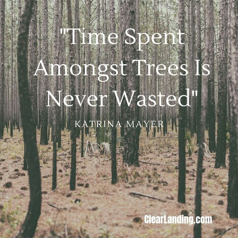 time spent amongst trees is never wasted